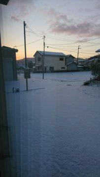 雪が積もりました・・・